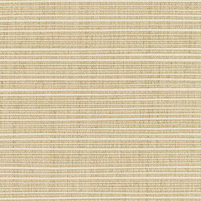"""Approximately 4""""x4"""" Shown of Dupione-Sand"""
